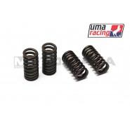UMA Racing Valve Springs - Suzuki Raider 150R/FX125/FXR150