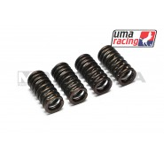 UMA Racing Clutch Springs - Kawasaki KRR150