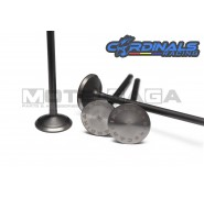 Cardinals Racing Oversized Valves - 4V Yamaha - Stage 3 - (24in/22ex)
