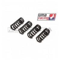 UMA Racing Valve Springs (R1/R3 cams) - Yamaha T150
